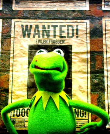 """""""MUPPETS MOST WANTED"""""""